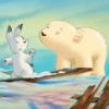 Piuma, il piccolo orsetto polare
