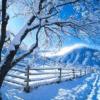 Stagioni: Inverno